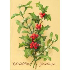 holly card
